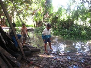Chuvas e enchentes de fim de ano causam doenças